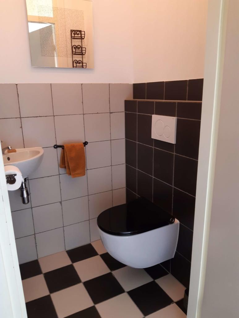 Toilet Renovatie Daan Montage