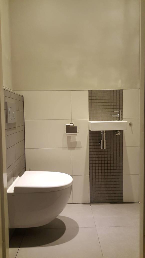 Toilet verbouwing Daan Montage